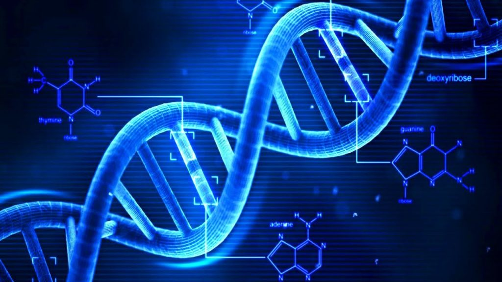 Malware in DNA